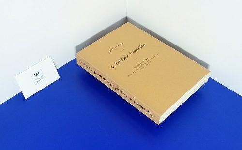 LENZ, M. - Briefwechsel Landgraf Philipp's des Großmüthigen von Hessen mit Bucer - Teil 2