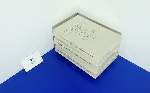 DEUTSCHE GESCHICHTSQUELLEN DES XIX. (u. XX.) JAHRHUNDERTS, Band 24